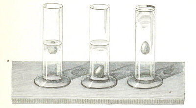 Drawing of a physics experiment with three test tubes, from an old science book